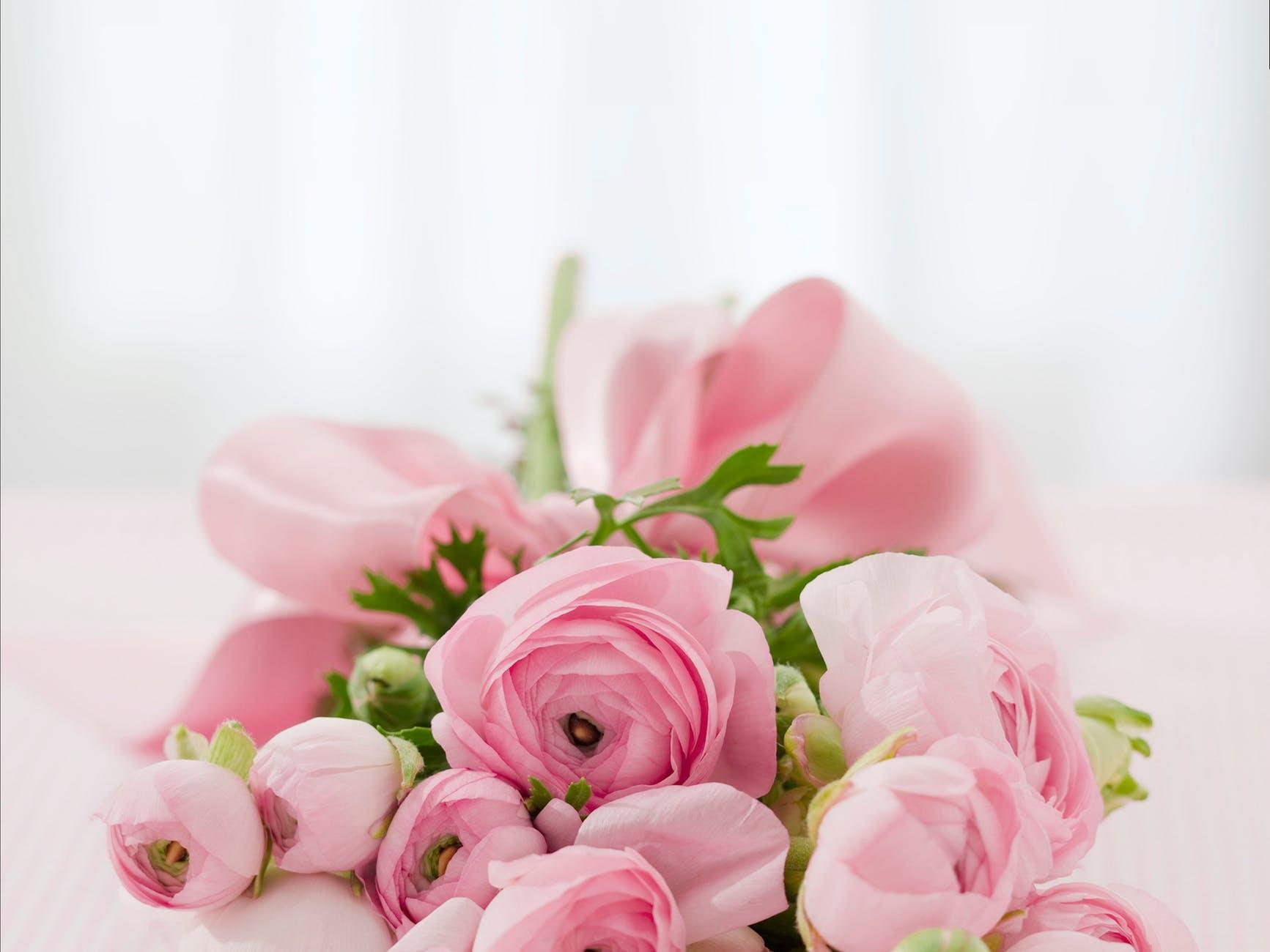 Denna bild har ett alt-attribut som är tomt. Dess filnamn är roses-bouquet-congratulations-arrangement-68570.jpeg